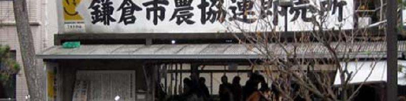 鎌倉の漁業と農業