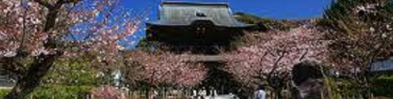 鎌倉の寺院・神社